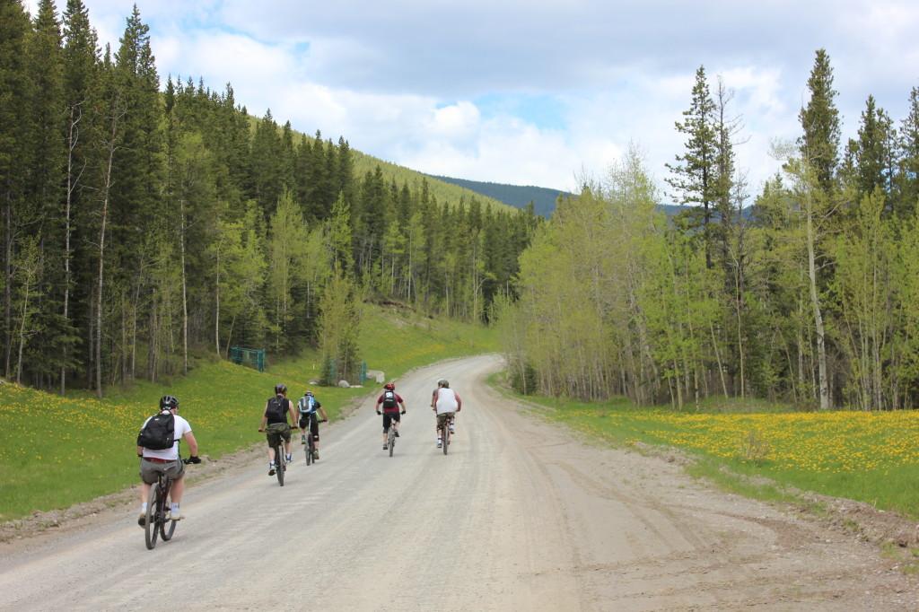 Down Hill Mountain Biking