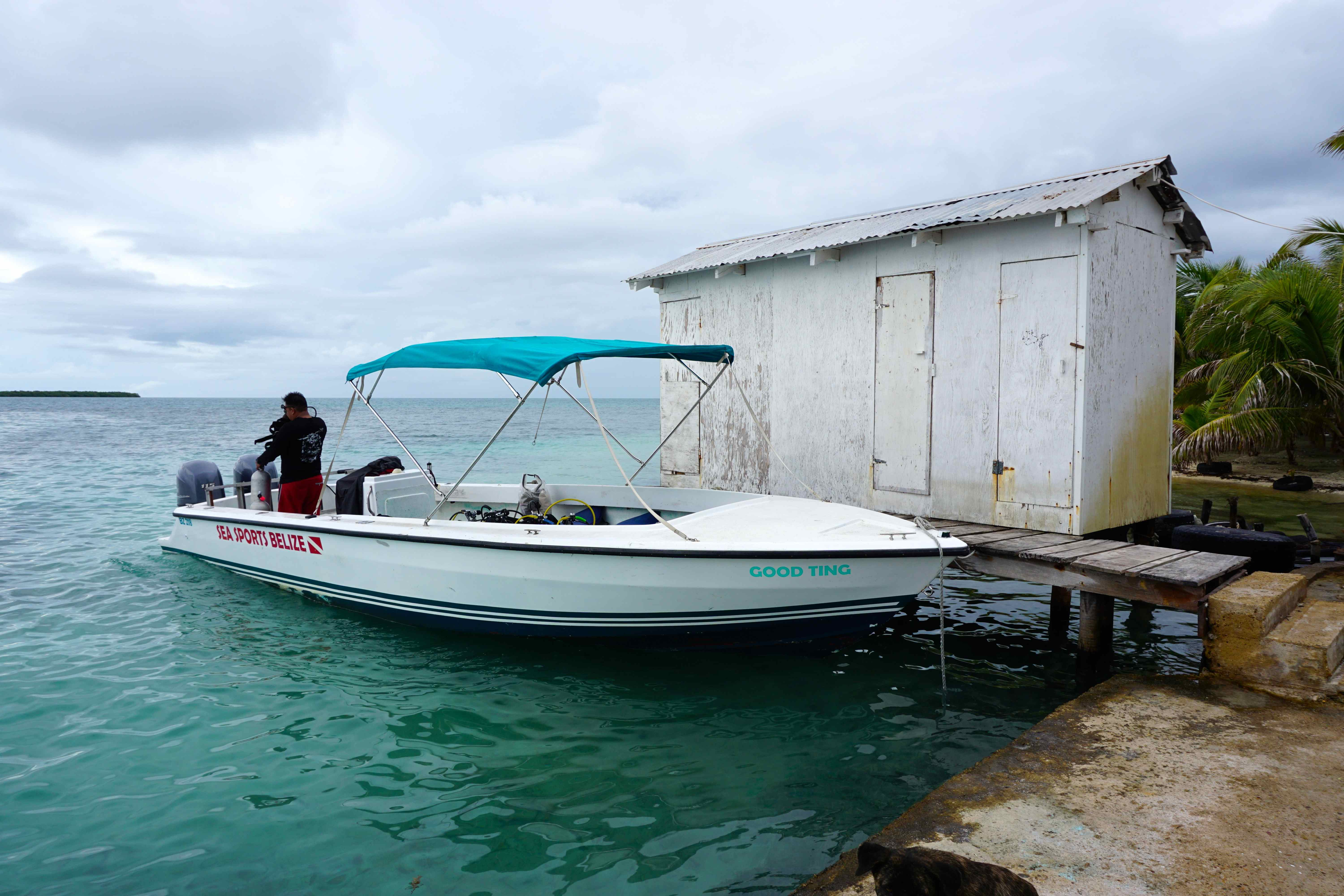 Diving Belize City