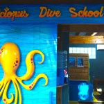 Octopus Dive School