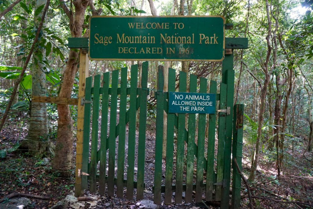 Entrance to Sage Mountain National Park